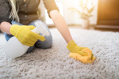 Person reinigt Teppich